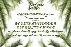 Ravina feuille Product Image 3