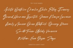 Babotta Clean Slanted Script Font Product Image 9