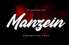 Manzein Product Image 1