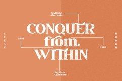 March Elegant Serif Font Product Image 4