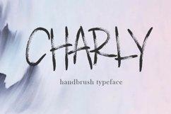 Brush Font Bundle - 45 Fonts Product Image 3
