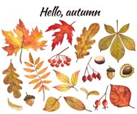 Watercolor autumn leaves, clipart Product Image 6