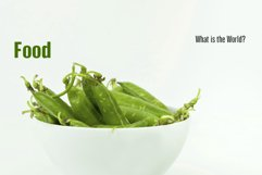 Arda Product Image 4