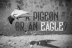 Bald Eagle Typeface Product Image 6