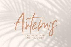 Artemis // A Hand-Lettered Brush Script Product Image 1