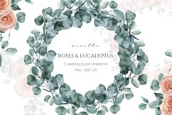 Eucalyptus and Roses Watercolor Wreaths Product Image 1