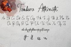 Tambora Product Image 4