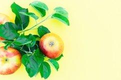 fresh ripe apples Product Image 1