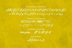 Web Font Adhitya - Beauty Script Font Product Image 4