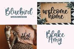 Modern Script Font BUNDLE Product Image 6