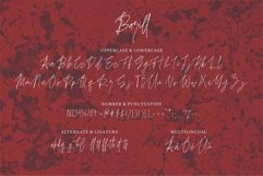 Web Font Barill - A Handwritten Font Product Image 4
