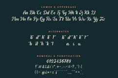 Quinka - A Casual Script Font Product Image 5
