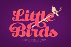 Little Bird Script Product Image 1