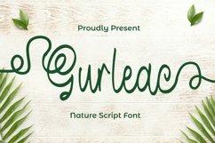 Web Font Gurleac Font Product Image 1