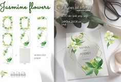 Jasmine flowers and leaves. Watercolor clip art. Product Image 3