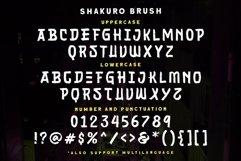 Shakuro - Brush Typeface Product Image 3