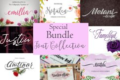 Special Bundle-Font Collection Product Image 1