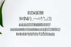 Mahlon Serif 3 Font Family Pack Product Image 5