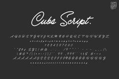 Cubs Script Product Image 5