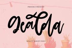 Gealda - Beauty Script Font Product Image 1