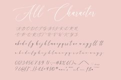 Amantea Script Font Product Image 5