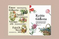 Michaela Calistta - Roman Serif Product Image 3