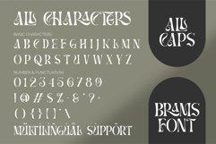 BRAMS - Display Serif Product Image 3