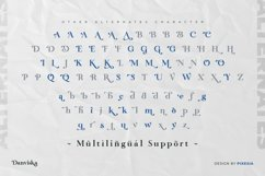 Danviska - An Elegant Modern Serif Font Product Image 4
