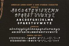 American Lemon Font Duo Product Image 5