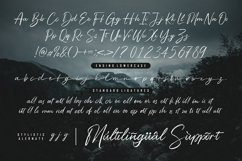 Web Font - Bigsby Hills Product Image 4