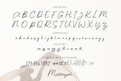Russek - Elegant Calligraphy Product Image 2