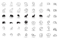 Set of Elephant Logo Design Product Image 1