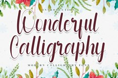 Wonderful Calligraphy - Modern And Beauty Font Product Image 1