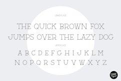 """BARN ACRE"" Sketch Font - Single Line/Hairline Font Product Image 3"