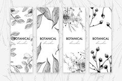 Botanical Brushes for Photoshop Product Image 5