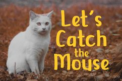 Cats Delight - Cat Display Font Product Image 2