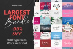 UPDATED 230 INSANE FONT SALE Product Image 1