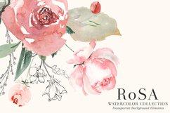RoSA - Floral Clipart Set Product Image 3