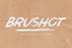 Brushot 4 Font Plus Swash Product Image 1