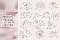 Peony flowers procreate stamp brushes, clipart Product Image 2