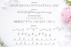 Bentley Script Product Image 3