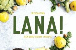 Web Font Lana Product Image 1