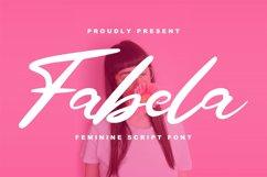 Fabela | Feminie Script Font Product Image 1