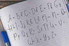 Web Font Vested Product Image 2