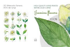Jasmine flowers and leaves. Watercolor clip art. Product Image 4