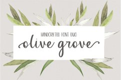 Olive Grove Product Image 1