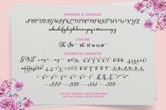Salsadila Script Product Image 8