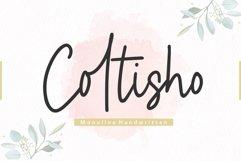 Coltisho Monoline Handwritten Font Product Image 1