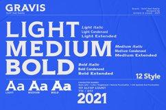 Gravis - Serif font family Product Image 2