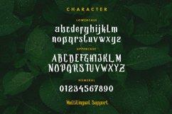 Morgana - Display Font Product Image 2